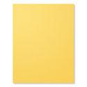 Daffodill Delight Pad